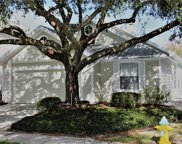 5134 Sterling Manor Drive, Tampa image