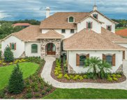 874 Skye Lane, Palm Harbor image