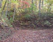 00 Possum Trot Trail, Franklin image