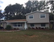 6420 Crest Hill Drive, Tampa image