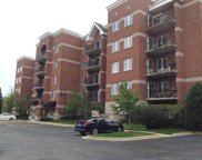 3401 North Carriageway Drive Unit 202, Arlington Heights image