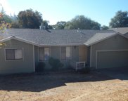 1632  American River Trail, Cool image