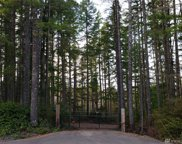 12 JM Dickenson Rd SW, Port Orchard image