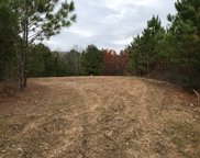 Sunhill Dr Unit 411 Acres, Remlap image