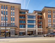 3450 South Halsted Street Unit 313, Chicago image