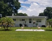 11902 Rhodine Road, Riverview image