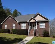 240 Wolf Dr, Odenville image