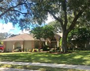 6832 Crescent Oaks Circle, Lakeland image