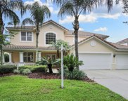 9210 Meadow Lane Court, Tampa image