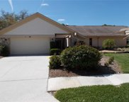 3322 Tanglewood Trail, Palm Harbor image