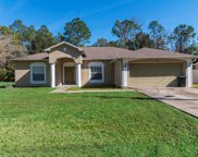 41 Serbian Bellflower Trail, Palm Coast image