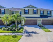 20209 Torch Lilly Way, Tampa image