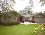 1706 Tall Pine Circle, Safety Harbor image