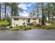 407 MOUNT PLEASANT  RD, Kelso image