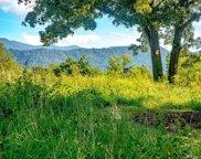 15 Wandering Oaks  Way, Asheville image
