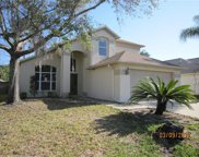 28421 Tall Grass Drive, Wesley Chapel image