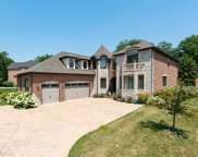 1736 Brian Grant Court, Downers Grove image