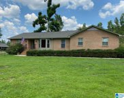 5521 Timber Hill Road, Indian Springs Village image