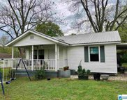 217 3rd St, Pell City image