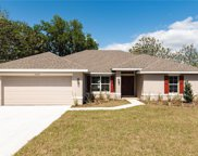 2045 Angel Fish Loop, Leesburg image