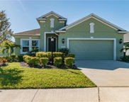 4111 Pine Meadow Drive, Parrish image