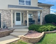 9346 Meadowview Drive, Orland Hills image