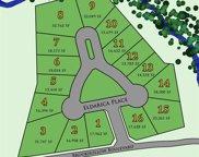 6888 Eldarica Place, Frisco image