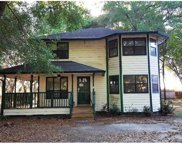 12907 Mikelyn Place, Thonotosassa image