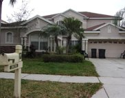 10130 Deercliff Drive, Tampa image