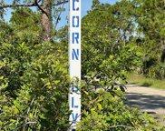 7457 Acorn Boulevard, Punta Gorda image