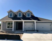 222 Orchard Park Dr, Liberty Hill image