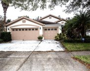 10215 Timberland Point Drive, Tampa image
