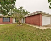 307 Willowbrook Dr, Hutto image