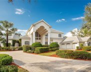 6671 Glen Arbor Way, Naples image