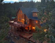 16349 Ouray Road, Pine image