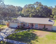 1621 Featherband Drive, Valrico image