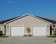 1114 Nelson RD N, Cape Coral image