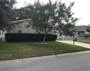 4108 Greenbluff Ct Unit 773, Zellwood image