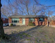 9811 Ione  Lane, St Louis image