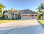 13740 Thoroughbred Drive, Dade City image