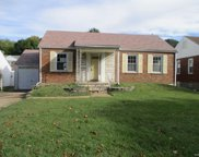 7113 Holly Hills, St Louis image