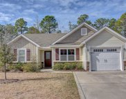 423 Blue Pennant Court, Sneads Ferry image
