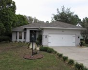 9911 Sw 196th Ave Rd, Dunnellon image