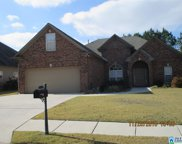 110 Oak Leaf Cir, Pell City image