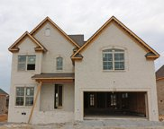 113 Shady Hollow Drive, Mount Juliet image