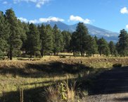 1 Y Redtail Road, Flagstaff image