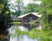 301 Jerry Sutton Rd, Alapaha image