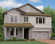 16313 Hyde Manor Drive, Tampa image