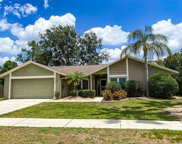 3908 Bell Grande Drive, Valrico image