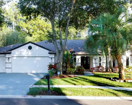 4740 Brayton Terrace S, Palm Harbor